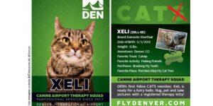 All'aeroporto Internazionale di Denver (Colorado- USA) c'è il servizio di Pet Therapy con animali che allietano l'attesa dei viaggiatori.